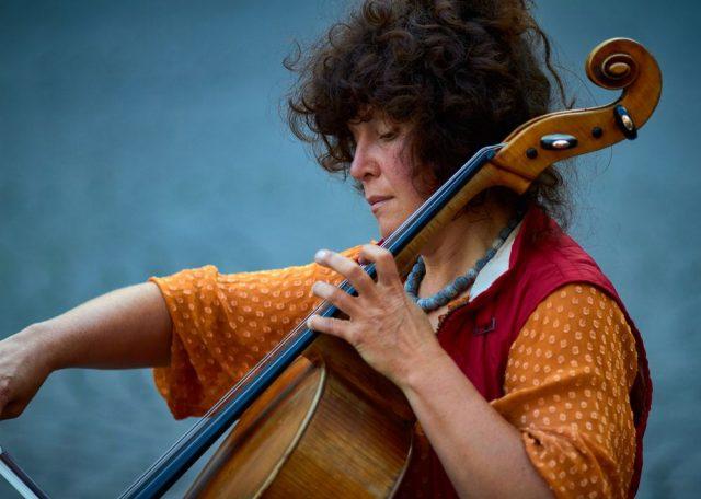 Finn din cello online i dag